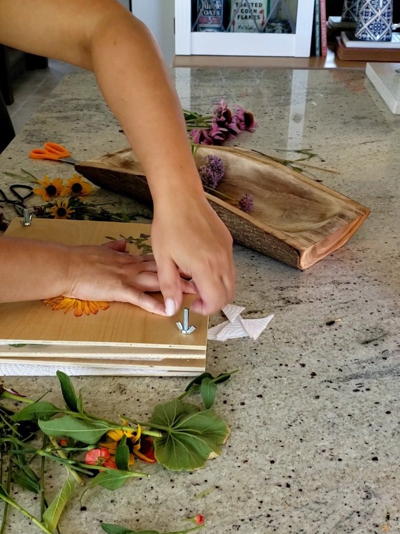 Tightening the wing nuts on a flower press