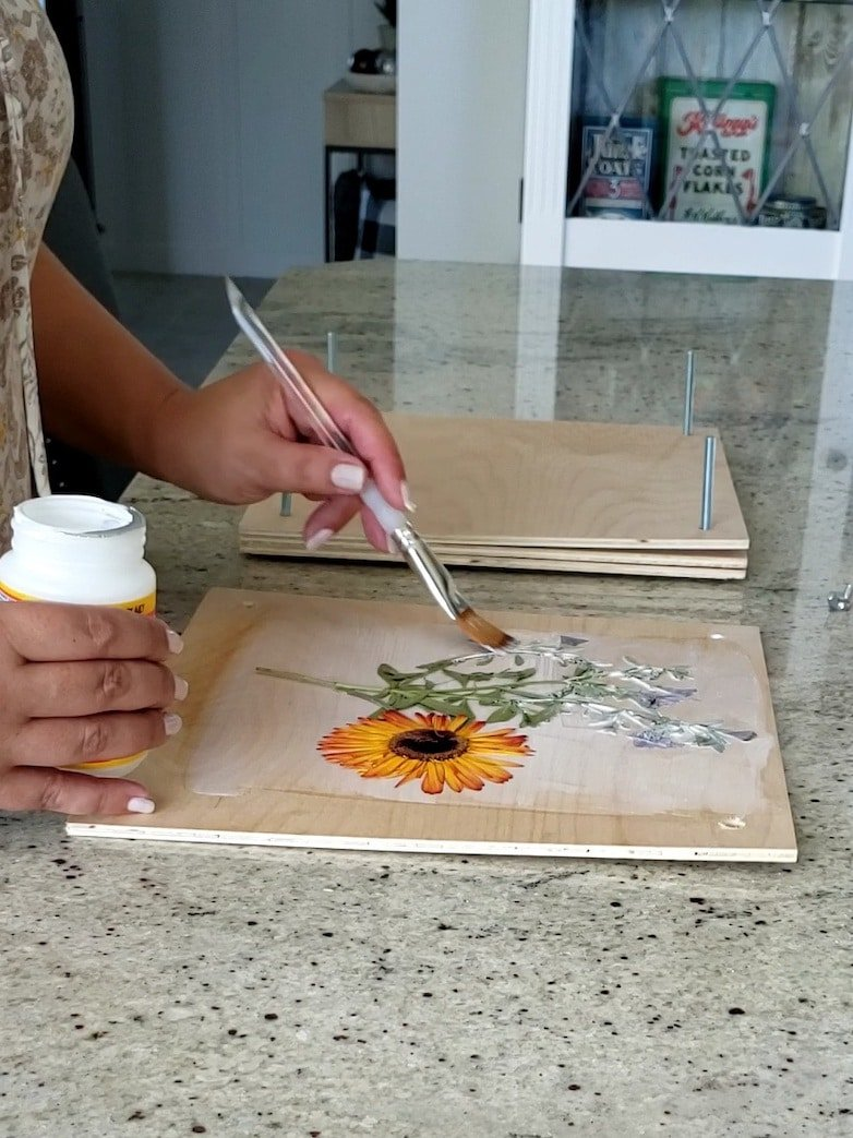 Painting modpodge on dried flowers